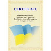 Сертифікат тип 10 російська мова